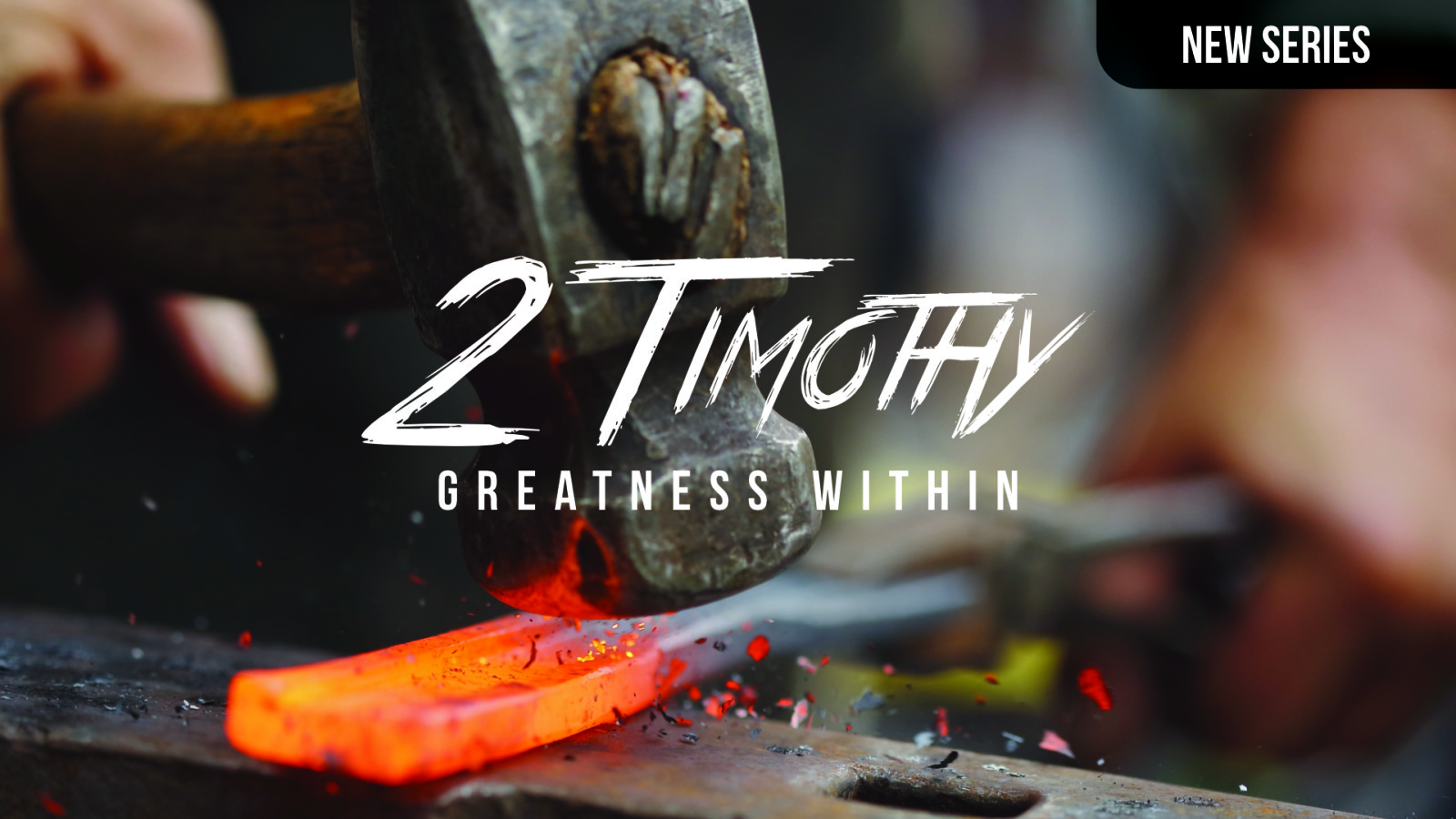 2 Timothy (New Series)